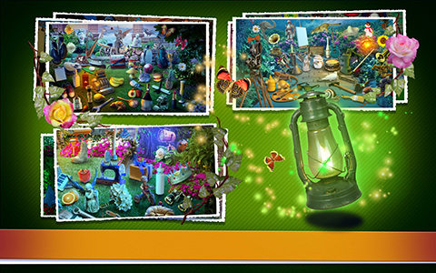 mystery garden.jpg